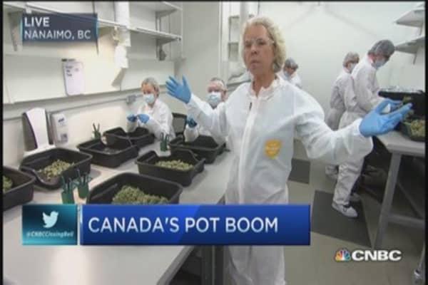 Oh, cannabis! Canada's pot boom