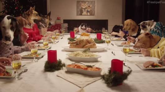 FreshPet holiday feast ad.