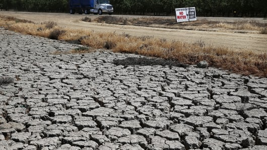 Dry cracked earth is visible near an almond orchard on April 24, 2015 in Firebaugh, California.