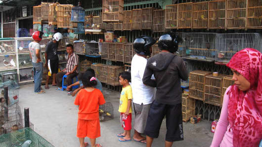 Shoppers look at birds in a market place in Sumatra, Indonesia.