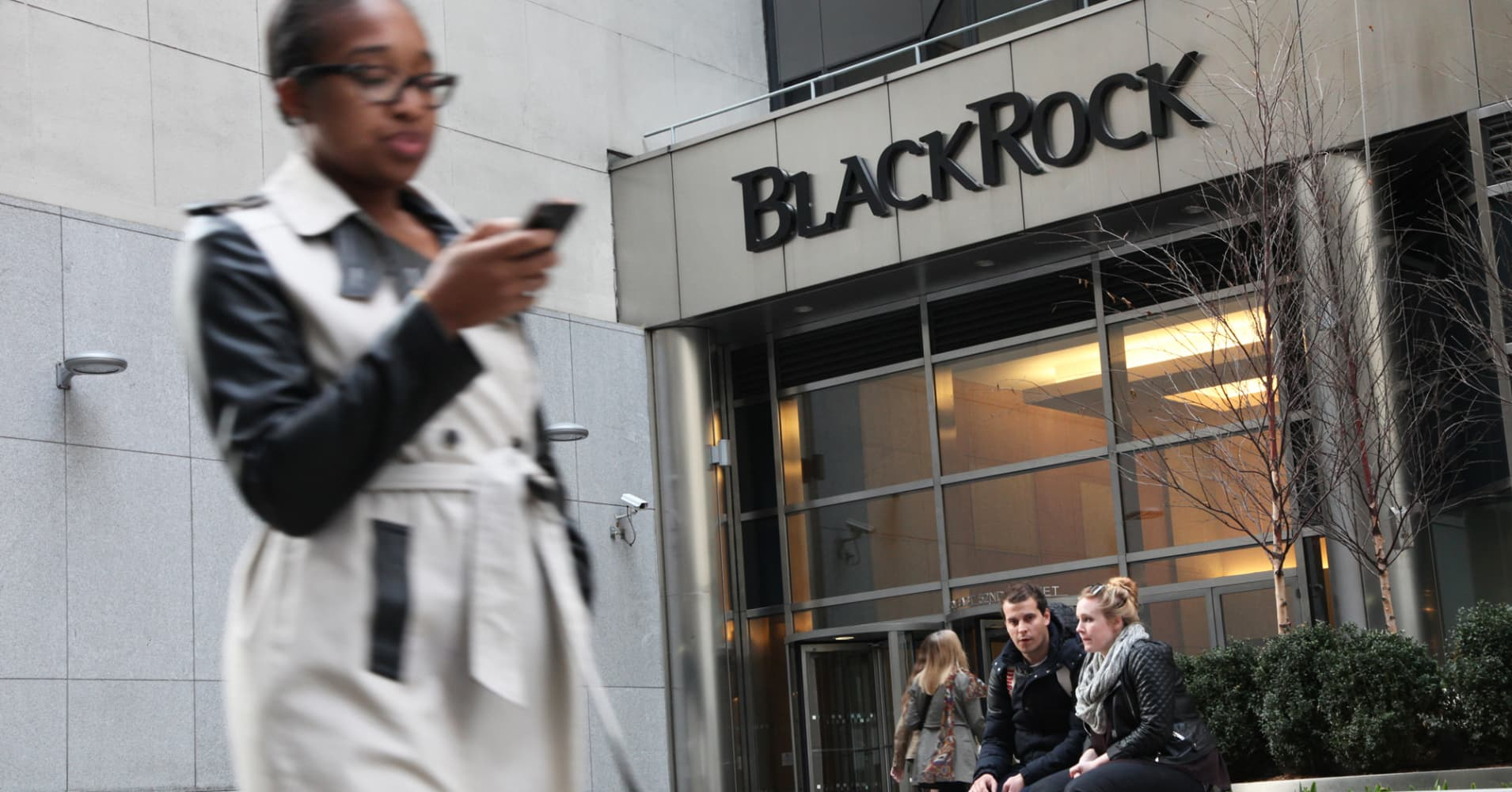 BlackRock vows new pressure on climate, board diversity
