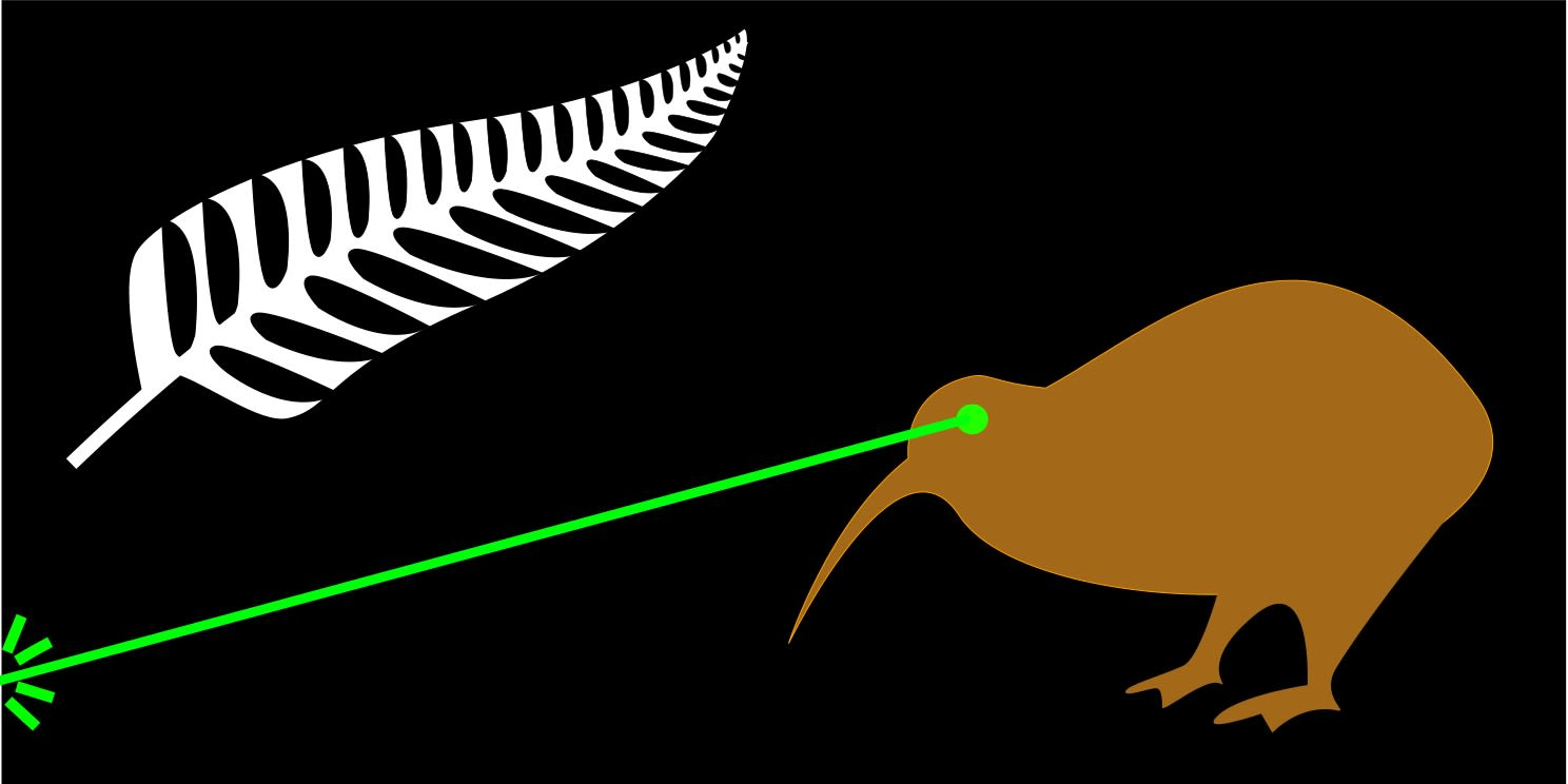 Could A Kiwi With Laser Eyes Be On The Next New Zealand Flag - New zealand flags