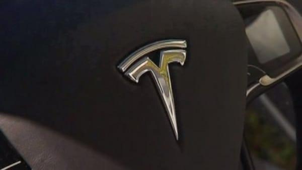 PETA's beef with Tesla