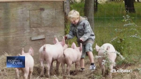 A fresh start on the farm