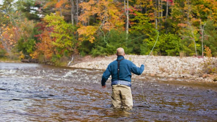 Fly fishing in White Mountains, Albany, New Hampshire.
