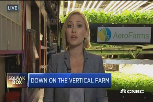 Vertical farming: The next big thing for food