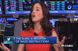 The euro: Weapon of mass destruction?