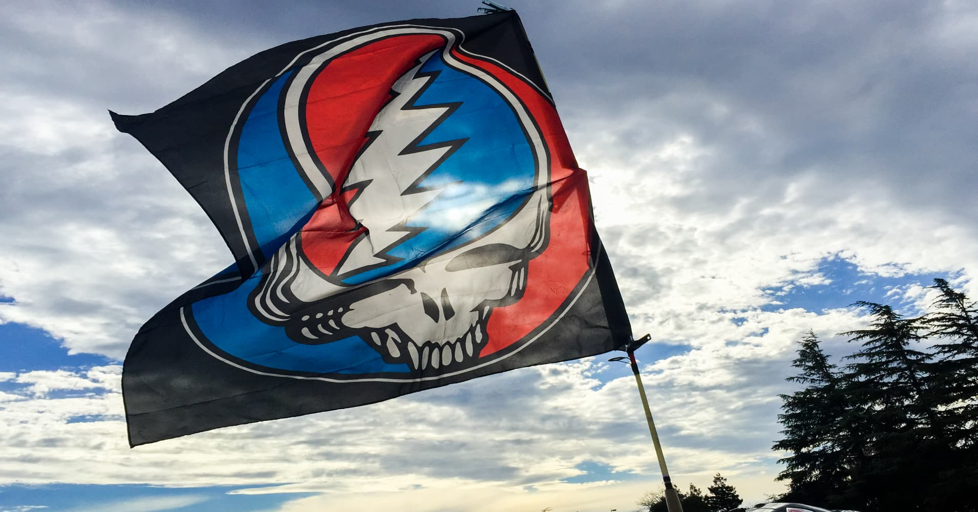 confessions of a deadhead 40 years with the grateful dead