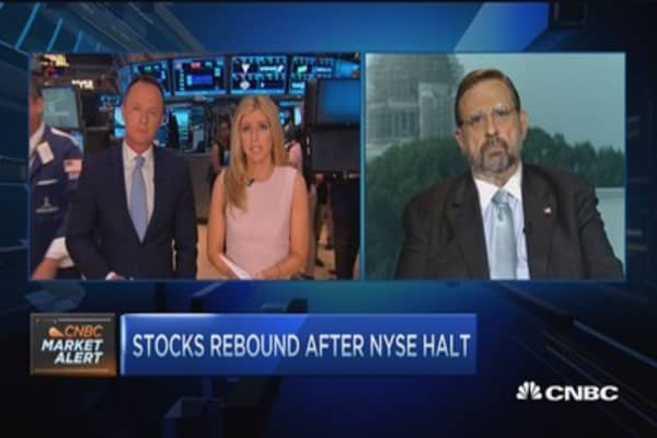 Harvey Pitt: NYSE could have handled halt better