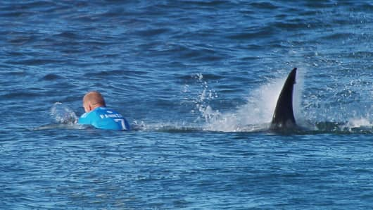 In this screen grab from footage by the World Surf League, Mick Fanning of Australia being attacked by a Shark at the Jbay Open on July 19, 2015 in Jeffreys Bay, South Africa.
