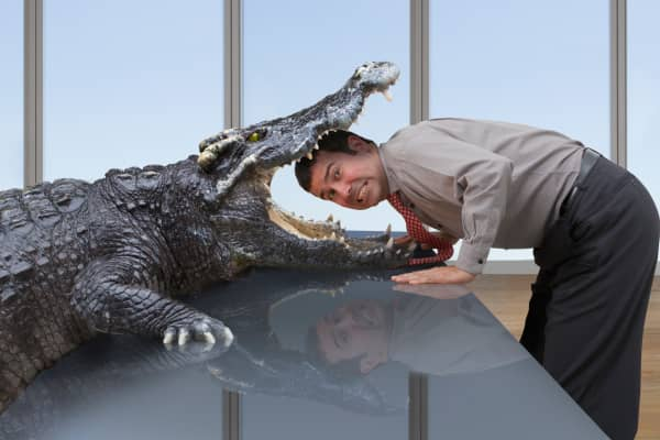 Businessman with head in alligator