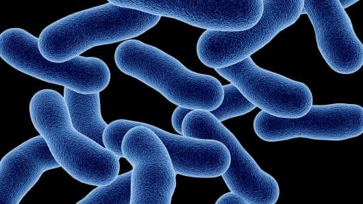 Computerized rendering of Legionaires' disease bacteria.