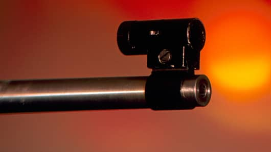 Rifle sight
