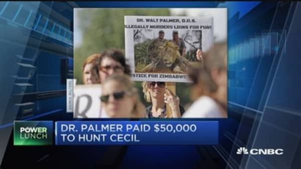 Dr. Palmer paid $50,000 to hunt lion Cecil