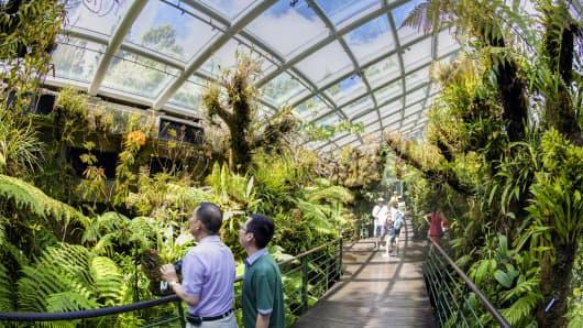 The Singapore Botanic Gardens.