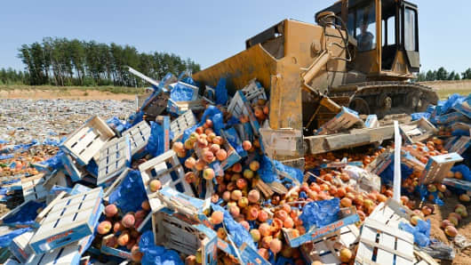A bulldozer crushes crates of foreign peaches outside the city of Novozybkov, about 600 km from Moscow, on August 7, 2015.