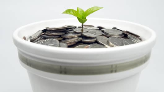 Seedling and money