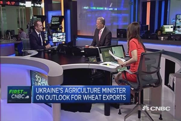 Separatists pose no risk to agribusiness: Ukraine Minister