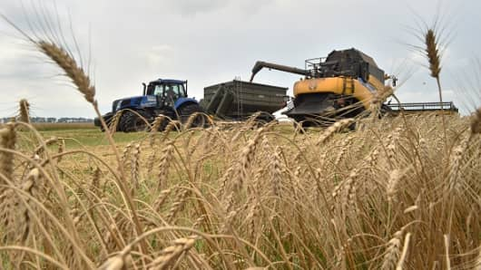 A combine harvester gathers grain from a field in the village of Mala Divytsa on July 27, 2015.