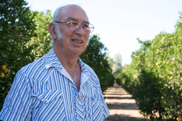 In 2015, citrus farmer Lorren Wheaton in Tulare County had received no surface water deliveries for two years. Oranges, pistachios, almonds and wine are among California's top agricultural exports.