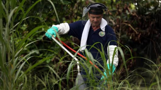 Stephen Jenner, from the Florida Department of Agriculture and Consumer Services, sprays an insecticide under an avocado tree where some Oriental fruit flies were found on September 9, 2015 in Homestead, Florida.