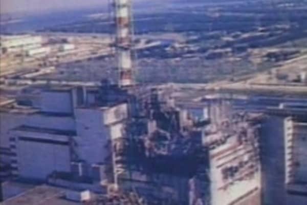 Chernobyl area of Ukraine has become accidental animal sanctuary