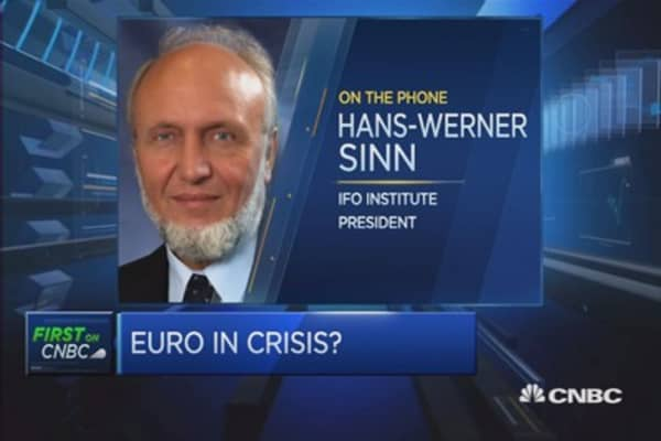 No one's a winner of the euro: Sinn