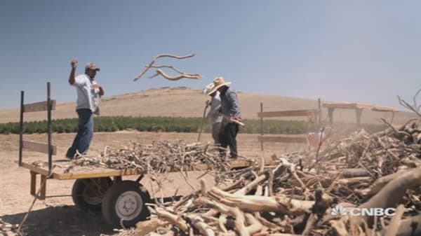 Drought Sick: Can California farmers survive?