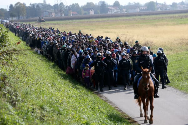 A mounted policeman leads a group of migrants near Dobova, Slovenia October 20, 2015.