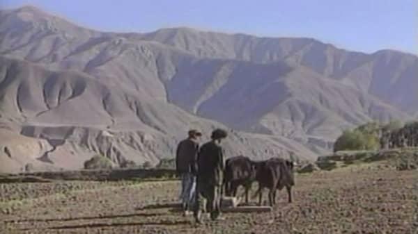 Magnitude 7.5 earthquake shakes Afghanistan