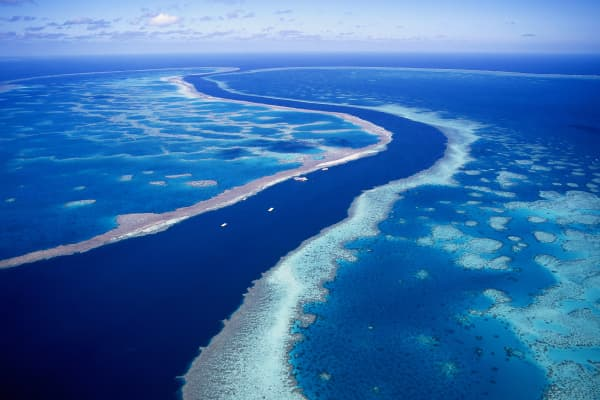 Aerial view of Hardy Reef near the Whitsunday Islands in North Queensland, Australia.