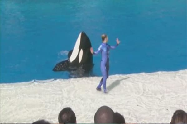 SeaWorld ends killer whale show
