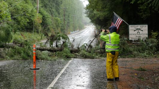 A worker with photographs a tree that fell on power and fiberoptic lines and blocking the NW Seabeck Highway, Tuesday, Nov. 17, 2015, near Bremerton, Wash.