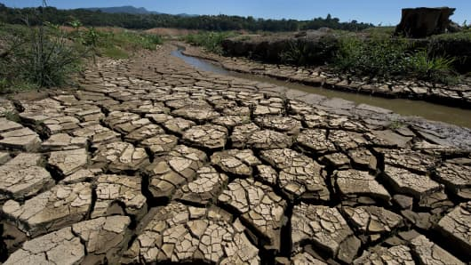 View of the bed of Jacarei river dam, in Piracaia, during a drought affecting Sao Paulo state, Brazil on November 19, 2014.
