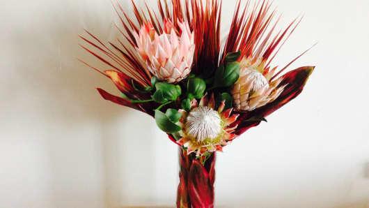 Meta Flora arrangement
