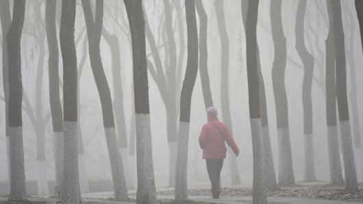 A visitor walks among trees as she visits the West Lake amid thick fog and heavy smog in Hangzhou, Zhejiang province, China, December 8, 2015.