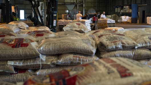 Workers bag pinto beans at the Weststar Foods Co. LLC facility at the Port Of Corpus Christi in Corpus Christi, Texas.