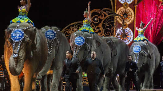 Elephants walk around the arena during a Ringling Bros. and Barnum & Bailey Circus performance