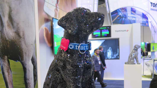 Tractive Pet Wearables at CES 2016