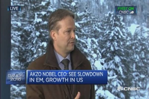 Akzo Nobel sees growth in US: CEO