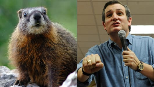 Groundhog and Ted Cruz