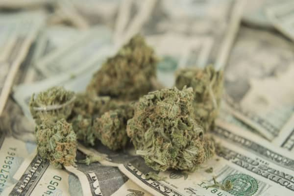 Warren Buffett of cannabis: Why you should invest in weed