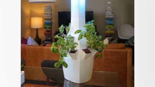 ROOT's indoor smart garden uses programmable LED lighting and an irrigation system to help maximize growth.