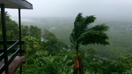 Trees blow in the heavy wind in Suva, Fiji, ahead of cyclone Winston's landfall on February 20.