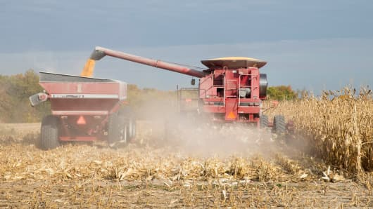 A farmer harvests corn near Burlington, Iowa.