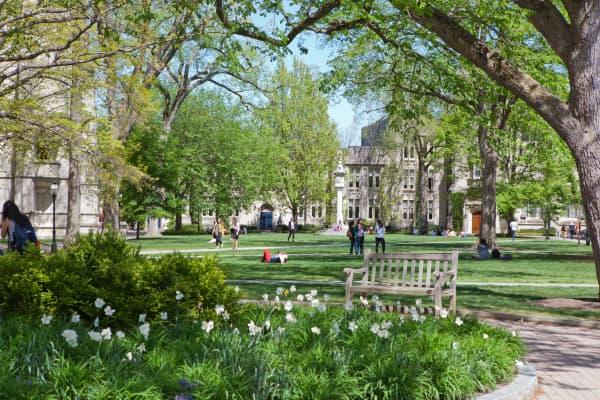 Princeton University campus lawn