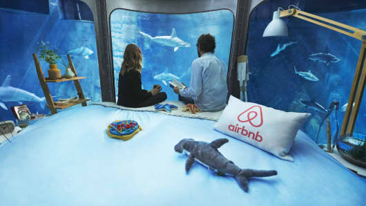 The Shark Aquarium experience offered by Airbnb and Aquarium de Paris