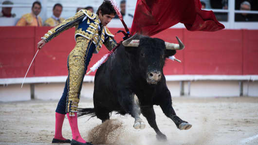 Bull fighting, bull market