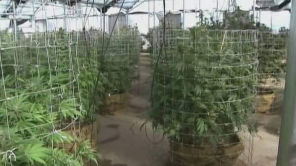 The next pot town outside Colorado