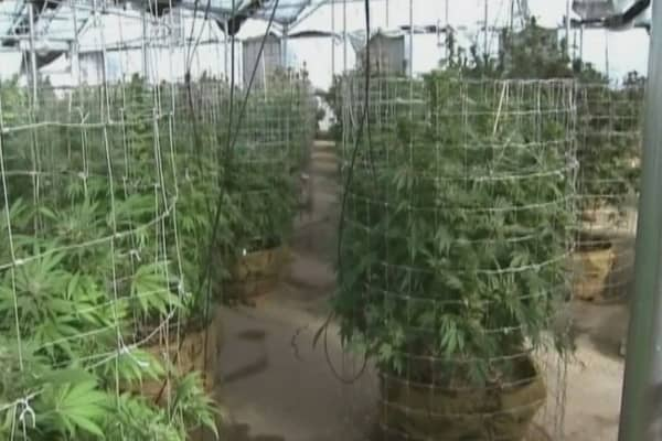 The next pot town outside Colorado